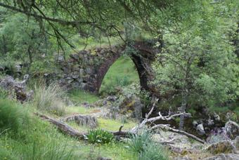 Pont de espinajeros