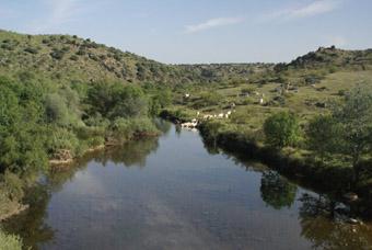 Rio Uso