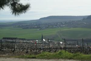 Vue sur le vignoble et les villages
