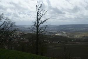Belle vue sur la vallée de la Marne et Epernay