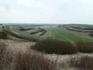 paysage de cuesta