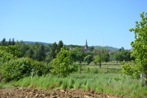 Vezelay 2014 (1825)